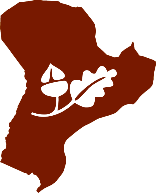 Amorín